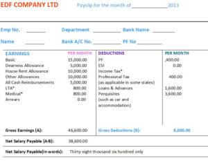 Private Job Salary Slip Format