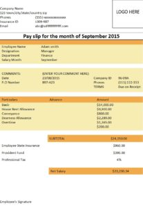Basic Salary Slip Format