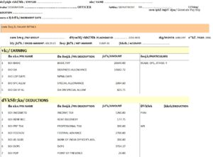 Example Salary Slip Format for Central Govt Employees